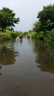 都川で1日水あそび